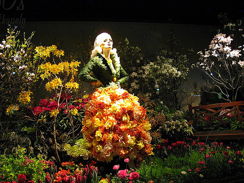flower-show-040108.jpg