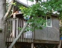 Played Go Fish in the treehouse