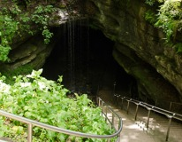 Mammoth Cave Park