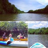 Emily Hamilton: Perfect morning kayaking The Little Miami with some fellow FRCH-ers!